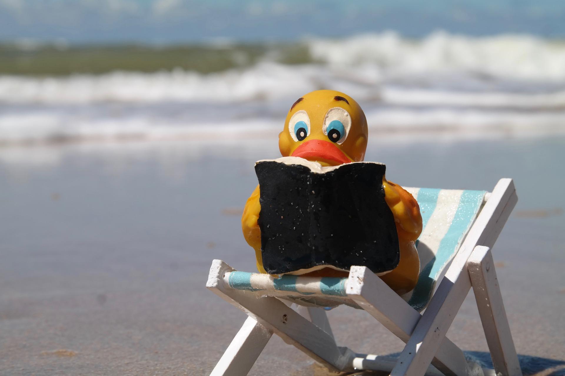 leer en verano